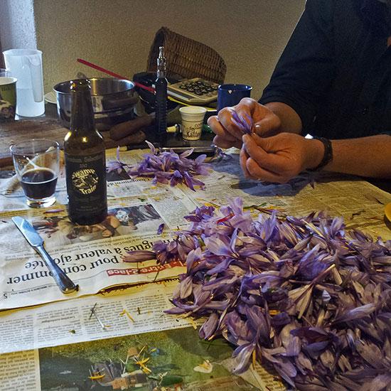 Cut Finger, Saffron and Swamp Train beer